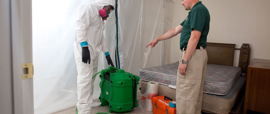 New London, CT mold removal process